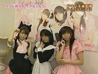 Maids at a maid cafe